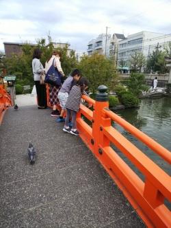 神泉苑(京都市中京区)
