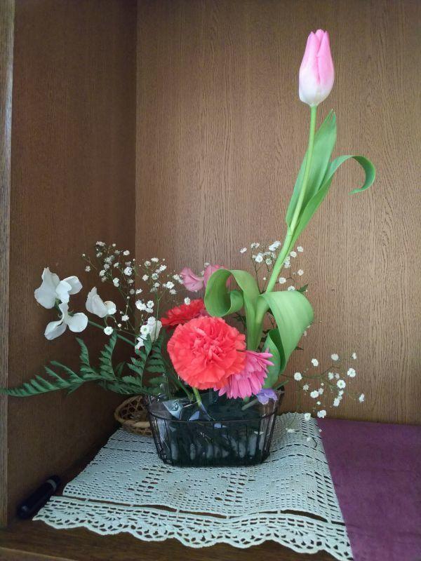 相続税・贈与税対策室の花(1月28日)